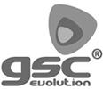 logo-gsc
